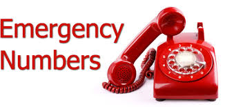 caregiver emergency information