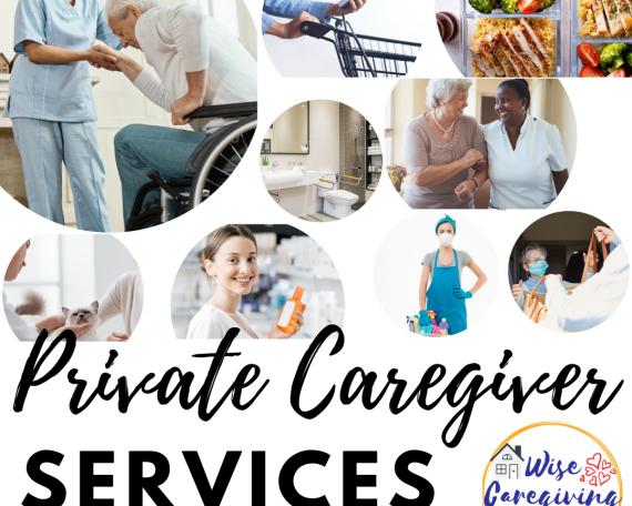 private senior care services-wise caregiving
