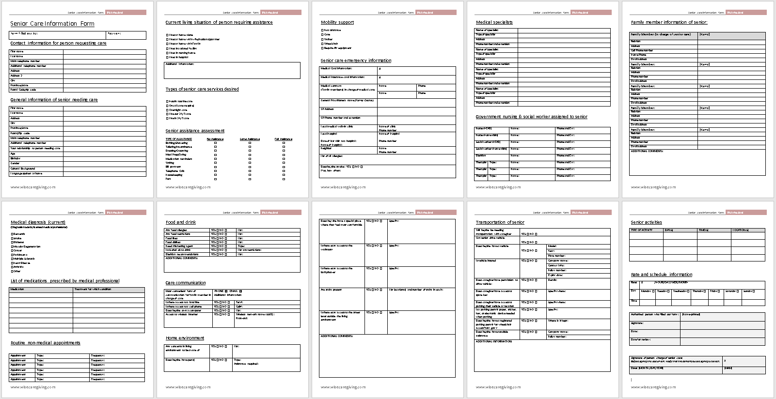 Senior Care Information Form Template-preview