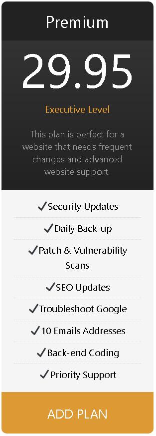 Premium website plan