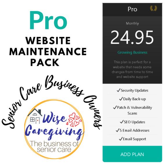 Website Maintenance-Pro